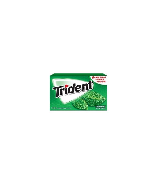Chewing gum trident sans sucres Menthe